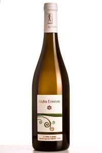 pecorino wine Giulia Erminia