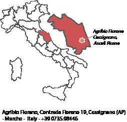 cartina-italia-fiorano-corretta