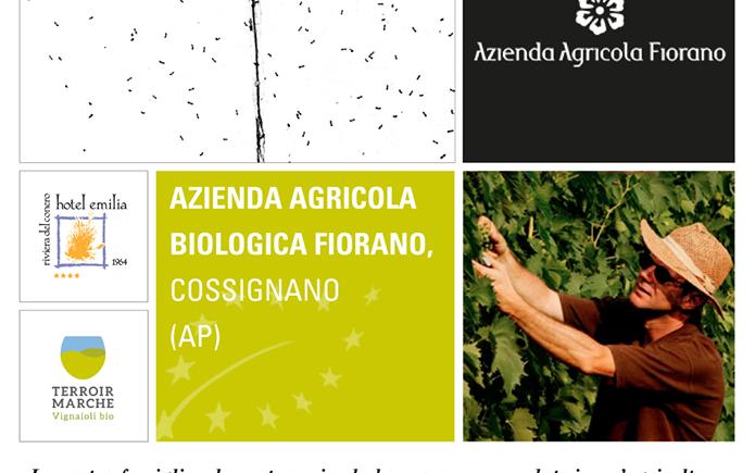 vini naturali  fiorano cantina biologica marche hotel emilia portonovo