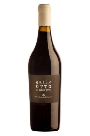 Gallo Otto vino anfora di Elio- Fiorano